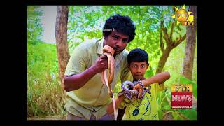 The youngest Snake Controller in Sri Lanka